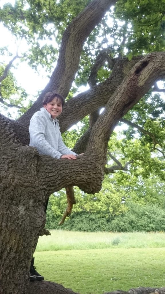 Thames View Camping tree climbing